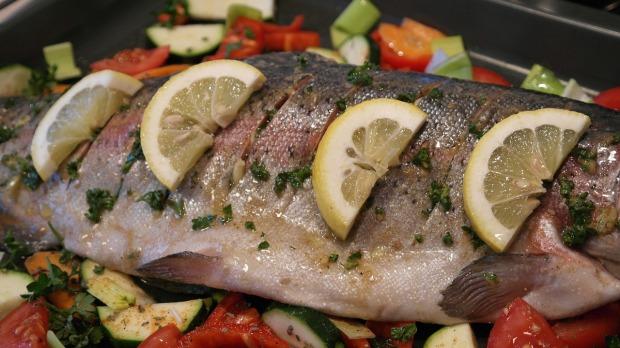 salmon-trout-540947_1280